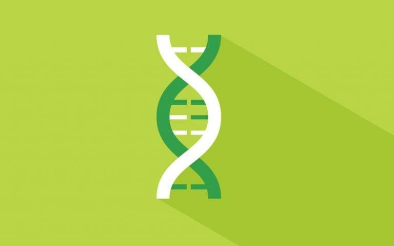 PIP-Blog_Chromosomal-microarray-testing-