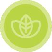 box-green-icon